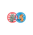 Boxing Democrat Donkey Versus Republican Elephant vector image vector image