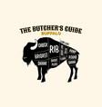 buffalo cutting charts poster vector image