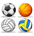 Different balls used in sports vector image vector image