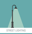 street lighting banner vector image