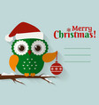 merry christmas card with cute owl and a place vector image