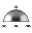 metal food cloche dome vector image