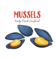 Mussels in cartoon style vector image vector image