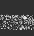 seasonal berries banner on chalkboard white vector image