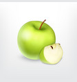 green apple with slice vector image
