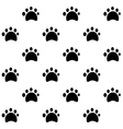 Dog Tracks pattern vector image