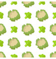 cauliflower and broccoli seamless pattern isolated vector image vector image