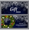 Christmas and New Year Gift Voucher Discount vector image vector image