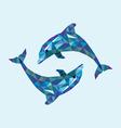 Dolphin low polygon vector image vector image