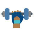 dumbbells icon image vector image