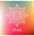 Ethnic round mandala vector image vector image