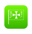 flag of columbus icon digital green vector image