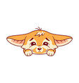 funny fennec fox looks with sadness with head on vector image vector image