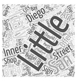 Little Italy San Diego Word Cloud Concept vector image vector image
