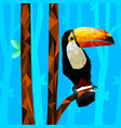 low poly colorful toucan bird with tree vector image