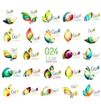 Set of colorful geometric leaves created with vector image vector image