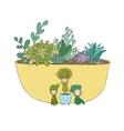 beautiful succulents in pot little fairy vector image vector image