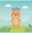cute and little bear teddy in field vector image