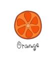 Doodle grapefruit slice vector image vector image