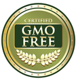 GMO Free Green Label vector image vector image