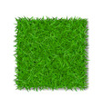 grass square 3d beautiful green grassy field vector image vector image