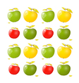 Green Yellow and Red Apple Background vector image