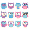 icons of cute colorful owls isolated on white vector image