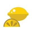 Juicy lemon fruit with slice cartoon flat vector image