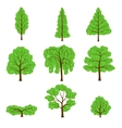 Set different crown of a trees isolated on white vector image