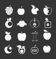 apple icons set grey vector image vector image
