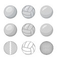 isolated object of sport and ball icon set of vector image vector image