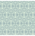 lace mesh vector image