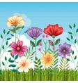 set floral garden scene vector image