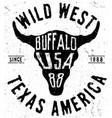 texas buffalo tee print graphic vector image