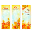 three autumn sale banners with colorful leaves vector image vector image