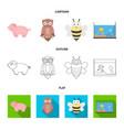an unrealistic cartoonoutlineflat animal icons vector image vector image