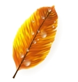 Autumn leaf isolated on white plus EPS10 vector image vector image