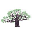 baobab tree design vector image vector image