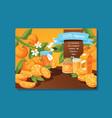 citrus fresh orange fruit backdrop and vector image