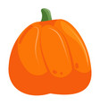 cute autumn pumpkin isolated on white background vector image