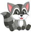 cute raccoon cartoon vector image vector image