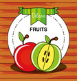 fresh apples fruits isolated icon vector image vector image