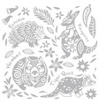 set with decorated australian animals in vector image