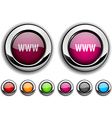 WWW button vector image vector image