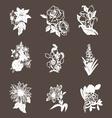 hand drawn flower design elements vector image