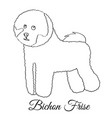 bichon frise dog coloring vector image vector image