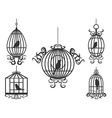 birdcage with birds vector image