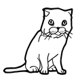 Cat and kitten Coloring Page for kid vector image vector image