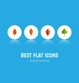flat icon leaves set of foliage frond linden and vector image vector image