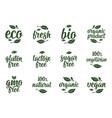 gluten lactose sugar gmo free lettering sign vector image vector image